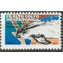 Sc 1817 Año 1993 Elalto Golfo De California Area Nacional Pr