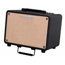 Combo Para Guitarra Electroacustica Ibanez 30w T30-n