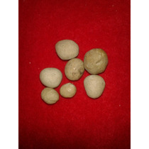 Piedra De Coyote Alfa