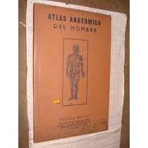 Libro Antiguo 1948, Atlas Anatomico Del Hombre