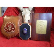 Lote De Medallas Heroico Colegio Militar Antiguas