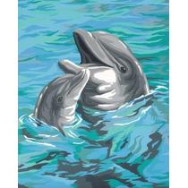Pintura Set - Paintsworks Aprender A Pintar Dolphin Duo