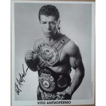 Fotografia Autografiada Firmada Vito Antuofermo Box Boxeo