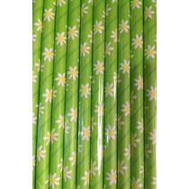 Popotes Biodegradables De Flores 20 Pzs