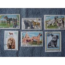 6 Timbres Postales Coleccion De Razas De Perros.