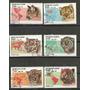 Republica De Benin Felinos Y Territorio 6 Diferentes Lbf