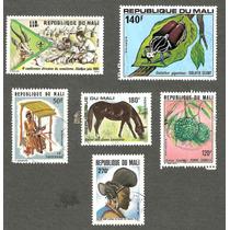 República De Mali En Africa Fauna Y Costumbres