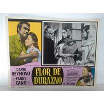 Cine David Reynoso, Fanny Cano Anuncio De Pelicula Hermoso!