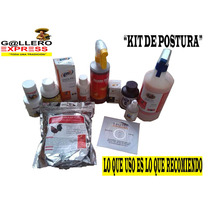Kit De Postura Para Gallos De Pelea