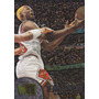 1995-96 Fleer Metal Dennis Rodman Bulls