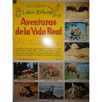 Album Un Libro De Oro De Estampas ( Aventuras De La Vida)