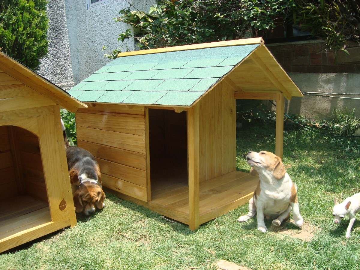 Top casas de madera para perro wallpapers - Casa de madera ...