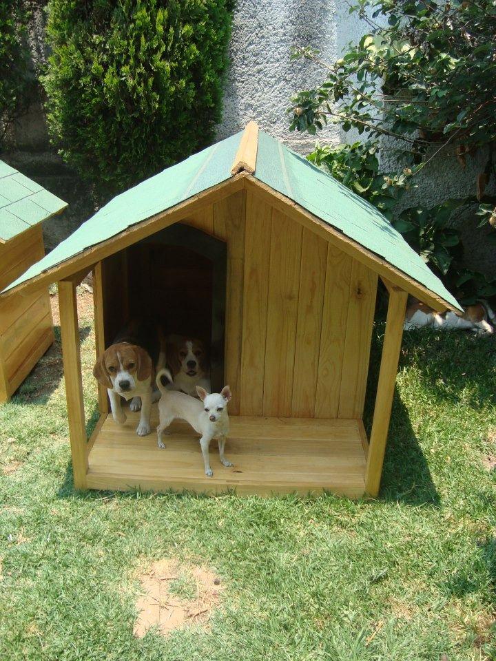 Casa para perro de madera residencial con terraza d lujo - Casa perros madera ...