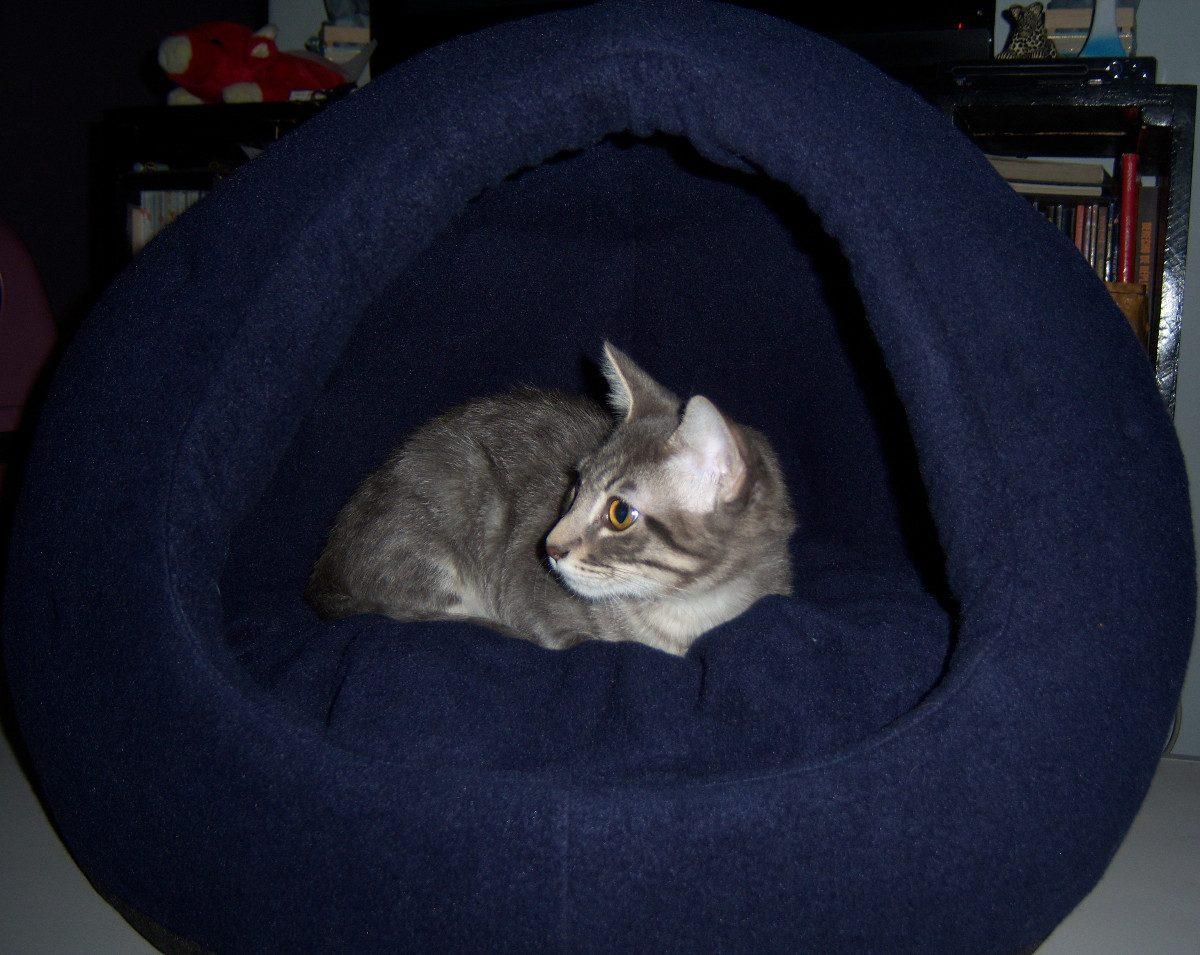 casitas iglu para perros y gatos #141727 1200x955 Banheiro De Gato Iglu