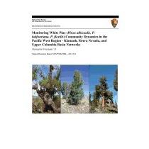 Monitoring White Pine (pinus Albicaulis, P., S T Mckinney