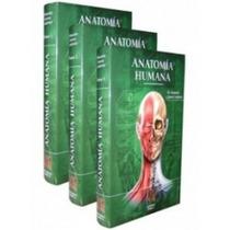 Tratado De Anatomía Humana De Quiroz En Pdf