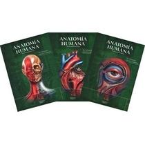 Anatomía De Quiroz Tres Tomos