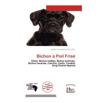 Bichon Poil Fris, Indigo Theophanes Dax