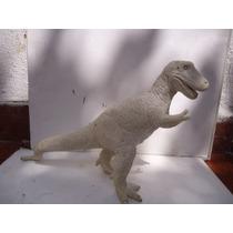 Tiranosaurio Rex Figura Para Pintar