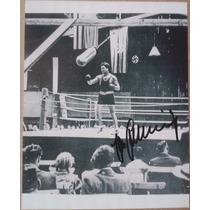 Fotografia Autografiada Firmada Max Schmeling Box Boxeo