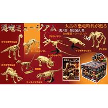 Coleccion De Esqueletos De Dinosaurios Mini Museo 10 Piezas