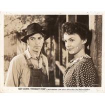Foto Original Sergeant York Gary Cooper Joan Leslie H Hawks