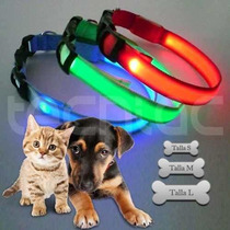 Collar Para Perro Gato Leds Color Luminoso Remate 2014