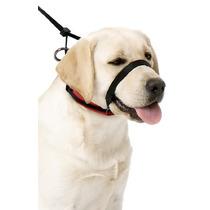 Collar Halter Para Perro Evita Jalones