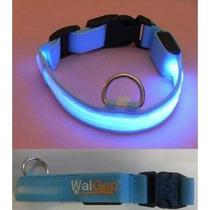 Collar Collar Luces Led Parpadeante Perro Nylon- Walgap (tm