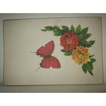 Mantel Antiguo De Flores Y Mariposa