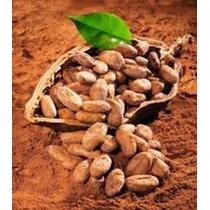 Cocoa En Polvo 1.0 Kg. Delicatessen Altamente Orgánico