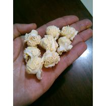 Maiz Palomero Mushroom 10kg