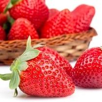Saborizante Concentrado Tpa/tfa Strawberry Flavor 60 Ml