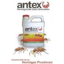 Antex Insecticida Para El Control De Hormigas En Jardin 227g
