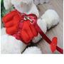 Pechera Y Correa Para Perro Con Alitas De Angel-mascota-