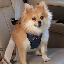 Pechera O Arnesde Seguridad Para Auto Solvit Chica Perro