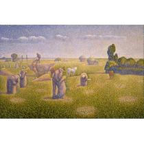 Cuadro Tela Charles Angrand - The Harvesters - 1892 50 X 76