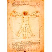 El Hombre De Vitruvio. Leonardo Da Vinci 70 X 100 Cm.