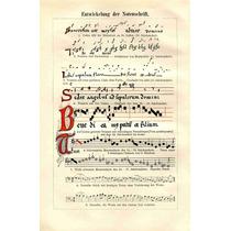 Lienzo Evolución Notas Musicales Alemania 1900 Raro 76 X 50