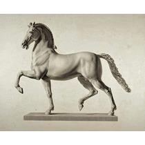 Lienzo Tela Caballo, Domenico Marchetti. Italian 73x100 Cm.