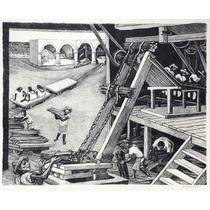 Alfredo Zalce Litografia Planta De Henequen Tgp 1946 Mexican