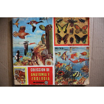 Album Antiguo De Estampas