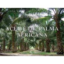 Aceite De Palma Africana 4litros