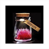 Crystal Botella De Deseos Con Led (rojo)