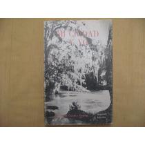 Alfonso García Y Álvarez, Mi Ciudad Y Yo, Libros De México,