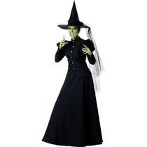 Disfraz De Bruja Del Mago De Oz Para Damas, Envio Gratis