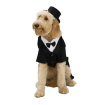Disfraz De Novio, Tuxedo Para Perros, Mascotas Envio Gratis