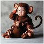Disfraz De Chango Bebe Primavera Animales 12 Mese A 5 Anios