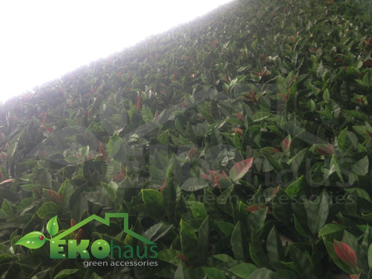 Enredadera artificial sintetica muro verde jardin for Jardin vertical mercadolibre