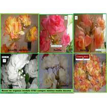 Plantas Y Flores Para Decorar Oficinas Idd